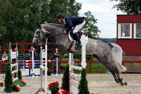 Marc Bettinger og hoppen Uburon vant Voortveld (e.Kashmir van Schuttershof) - Foto: Avlshest.no