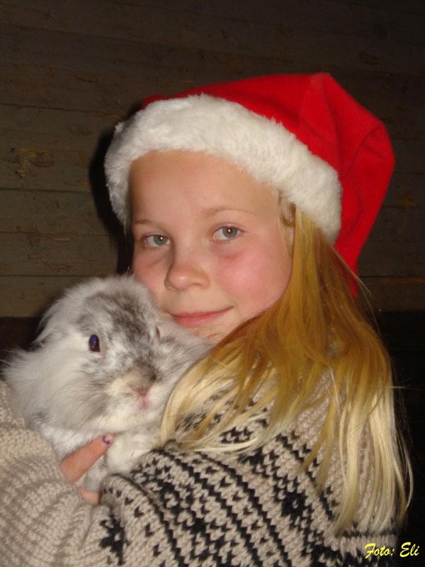 God Jul og Godt Nytt År til alle!