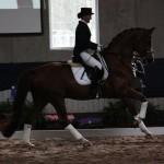 Royal Olymp og Siv Morberg på oppvisning ved NV's  Hingstekåring