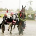 Millennium Act - Vinner av Norsk Derby 2003